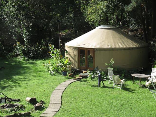 Luxe Yurt op droomlocatie in de natuur, bij Breda - Galder - Rundzelt