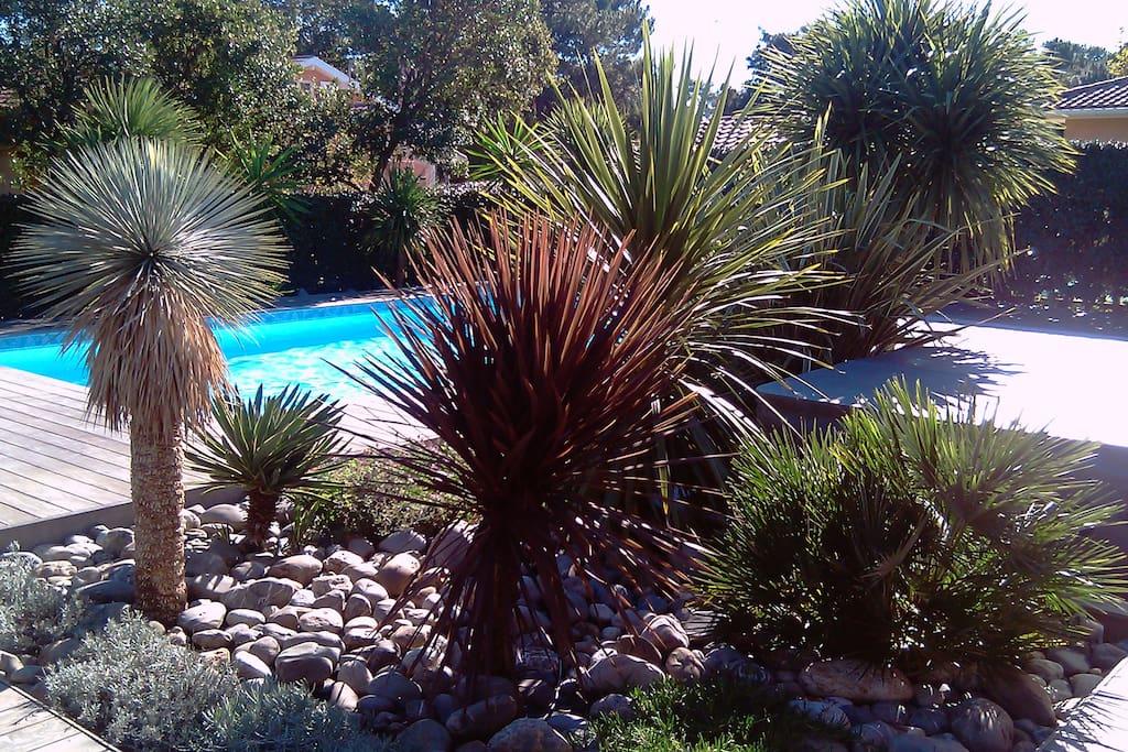 Villa avec piscine spa et hammam proche plages villas for Piscine avec hammam paris