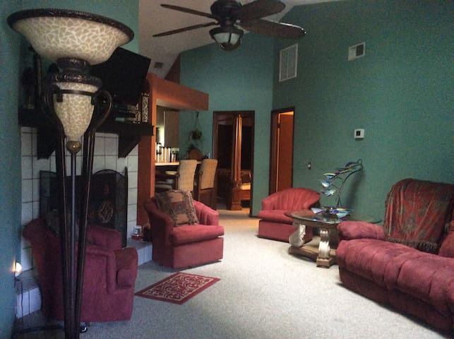 Tampa comfy couch/full bathroom - Tampa - Townhouse