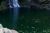 je vous propose de vous faire visiter ces lieux bassin caché avec cascade