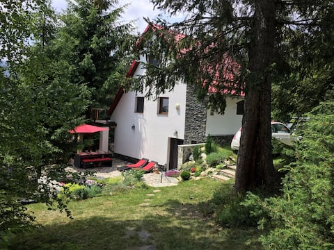 Mountain chalet in Transylvania - 50km from Cluj