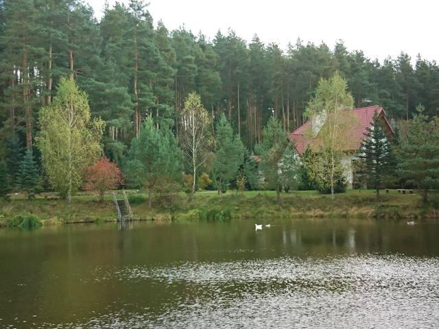 Дом на берегу озера в сосновом бору