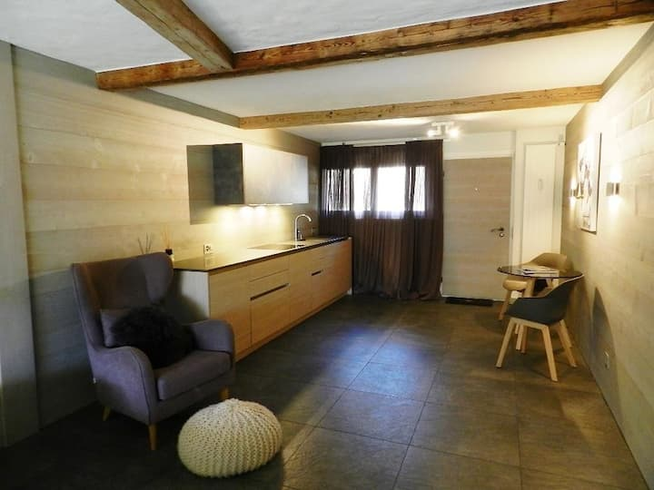 Charly Luxury Studio in Gstaad