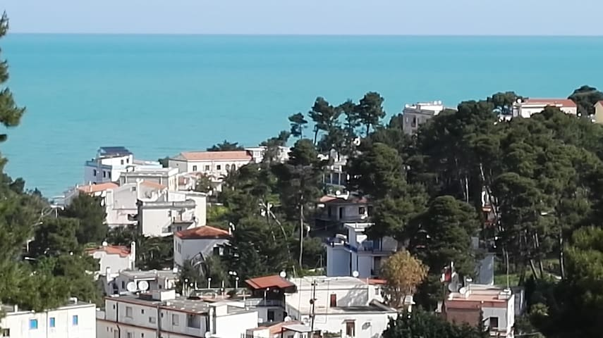 Le Zagare - San Menaio - Wohnung