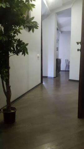 Аппартаменты а Тбилиси - Tbilisi - Appartement