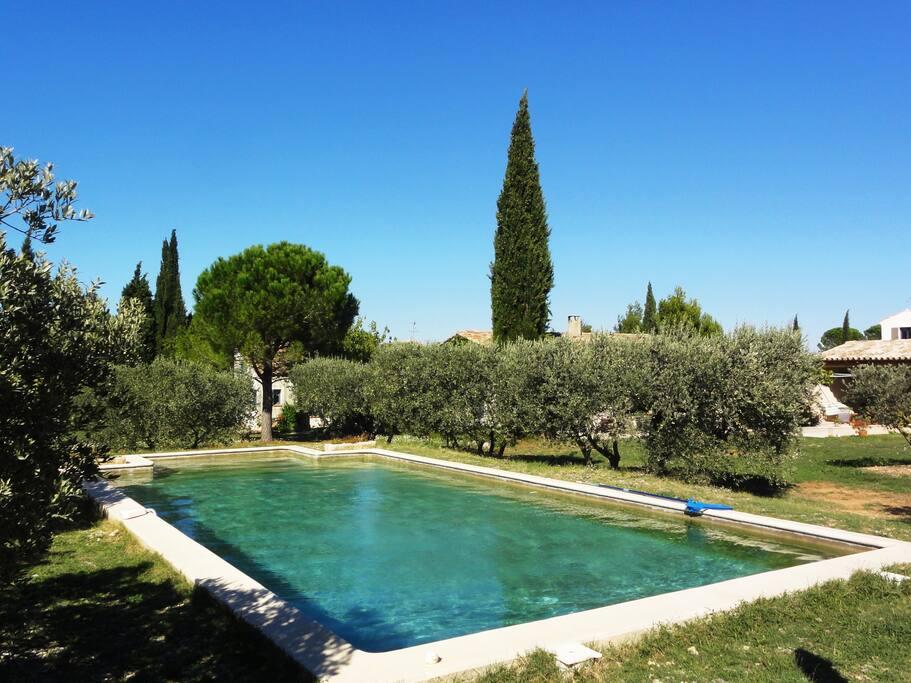 Pour votre plaisir, une piscine 10mx5m sécurisée