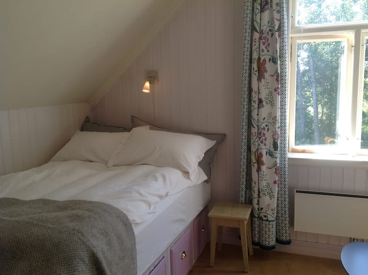Room, 5 min from centre, 10 min from University.