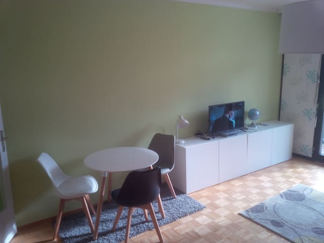 Studio Apt for 4pp in Mariazell, 200m to Ski Lift - Mariazell - Wohnung