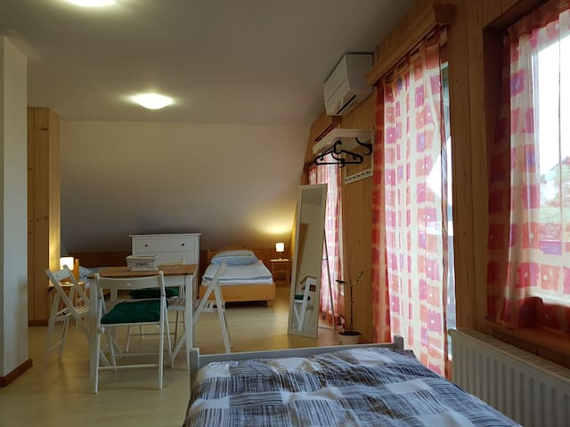 Slovenia resort apartmens & rooms apt.1