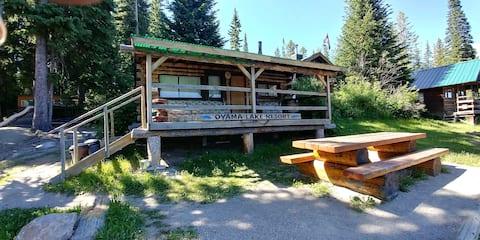Cabin #1 - Lake Front Vintage Cabin