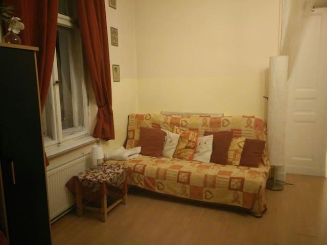 cosy room in Friedenau - Berlijn - Appartement