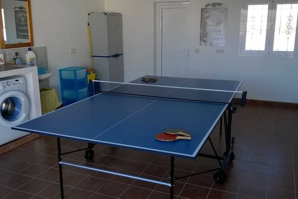Garage with table tennis table