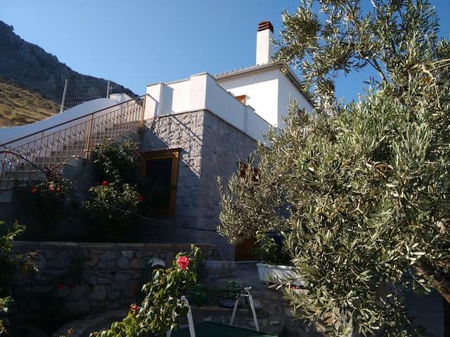 artemis villa