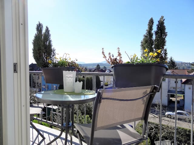 Schönes Dachgeschoss-Studio - Göppingen - Apartment