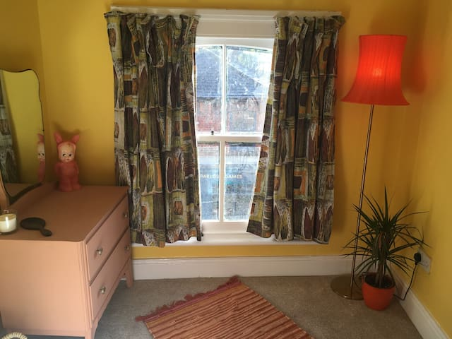 Sash windows and original 1950s and 60s decror