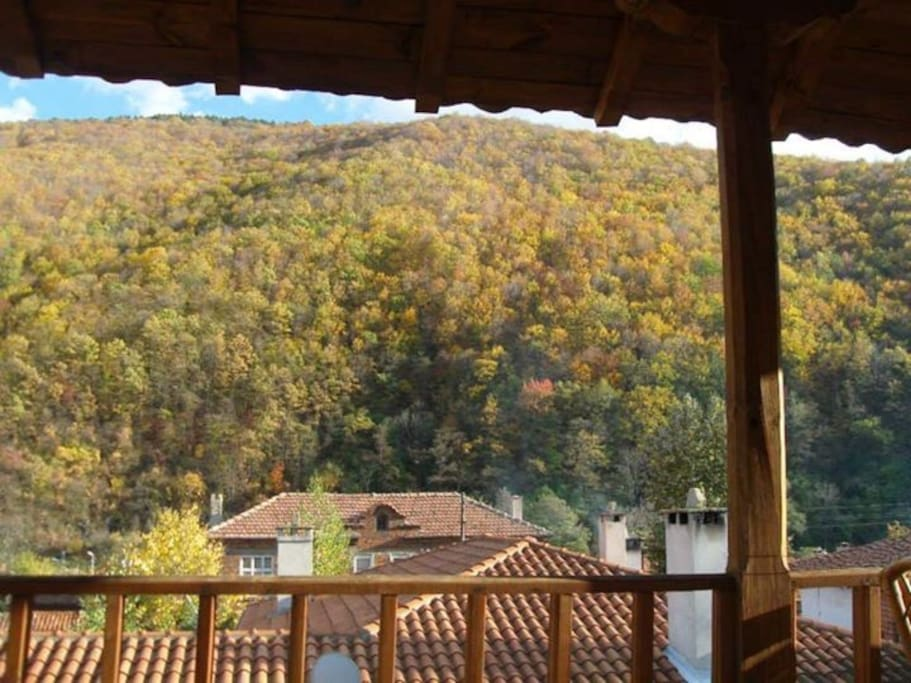 View from the balcony in Autumn