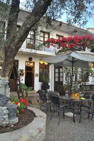Cozy Home in Sucre! Viejo Olivo