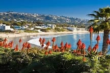 The Famous Laguna Beach just a short drive away!