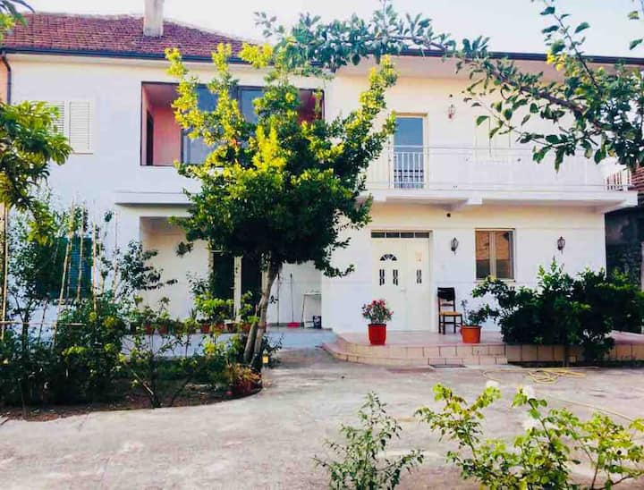 Wonderful villa in the city center of Shkodër