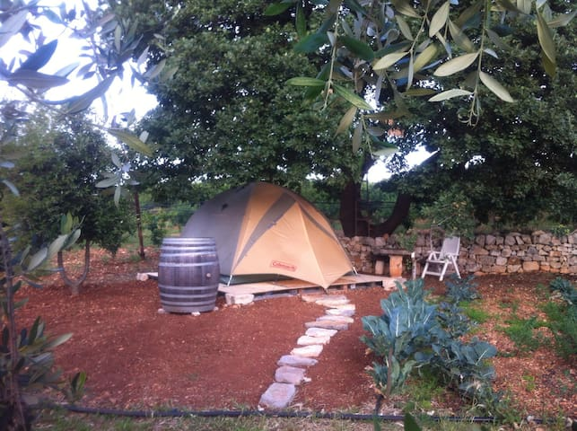 Glamourouse tent in country side of Conversano - Conversano - Tent