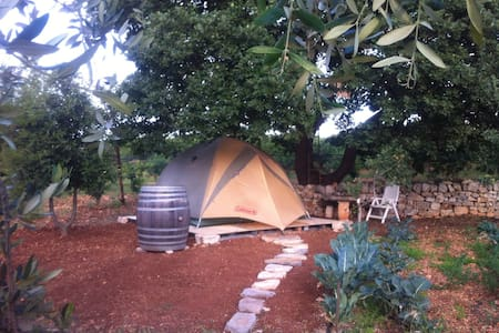 Glamourouse tent in country side of Conversano - Conversano - Telt