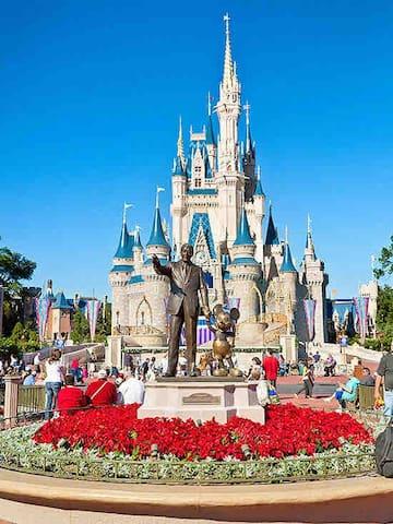 Walt Disney World Magic Kingdom. 1 hr.  drive.