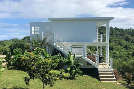 Villa Tessa Rose tropical digs