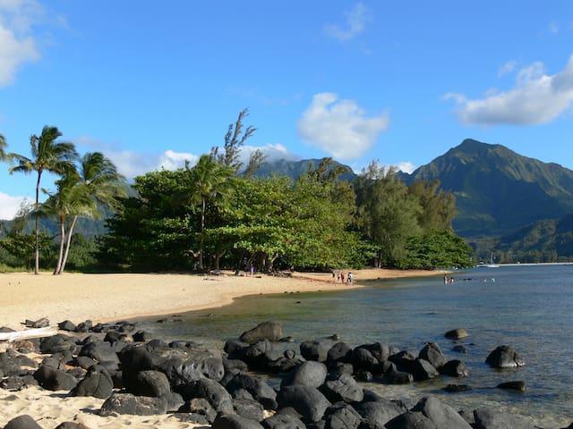Hanalei Bay Resort 4-6 person Condo with View