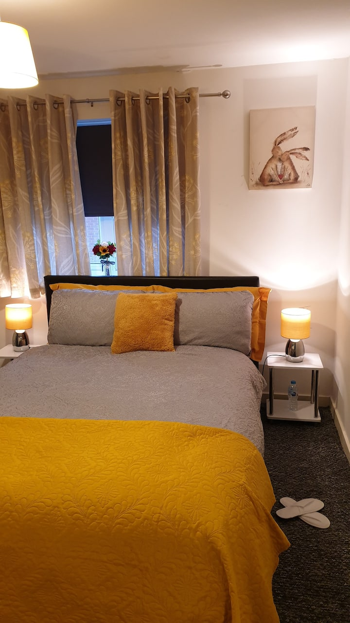 Deluxe  Double Room wth Dedicated Bath/Toilet-2STR