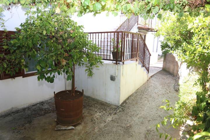 A2(2+2): garden