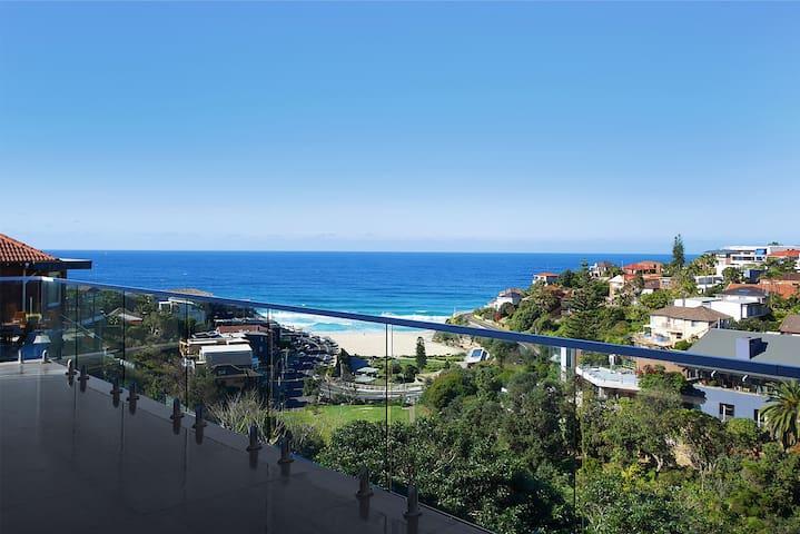 Tamarama Panorama