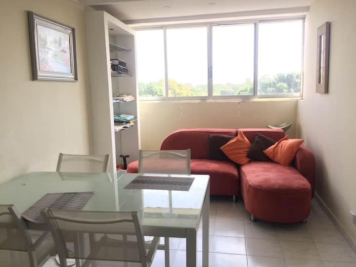 Studio apartment in Panama City