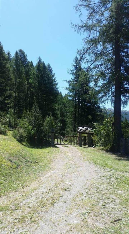 Baita montana