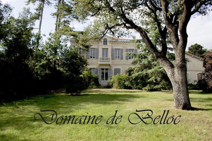 Gîte Glycine - Alzonne - House