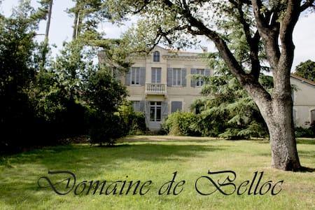 Gîte Glycine - Alzonne - บ้าน