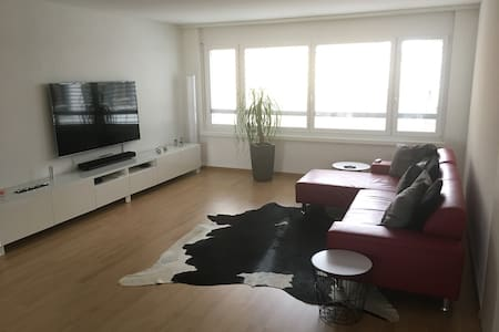 OLTEN: Grosses Zimmer (14 m2) mit eigenem Bad - Olten - 公寓