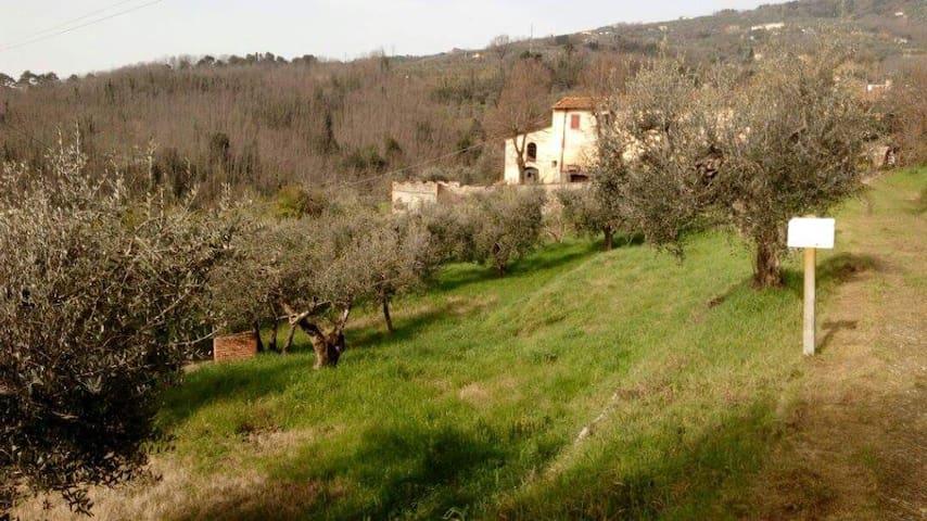 double room Tuscany - Serravalle Pistoiese - Villa