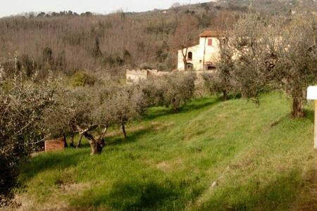double room Tuscany - Villa