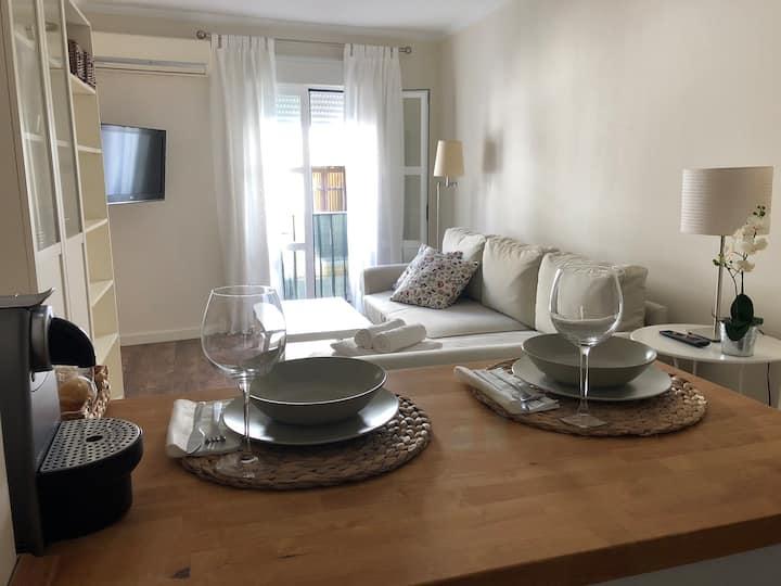Apartamento con encanto Javier Lasso De la Vega 3
