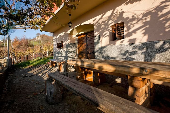 Vineyard cottage Kambič - Gornja Lokvica - บ้าน