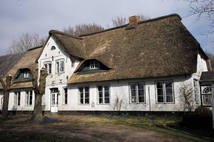 Idyllisches Landhaus umgeben von altem Baumbestand