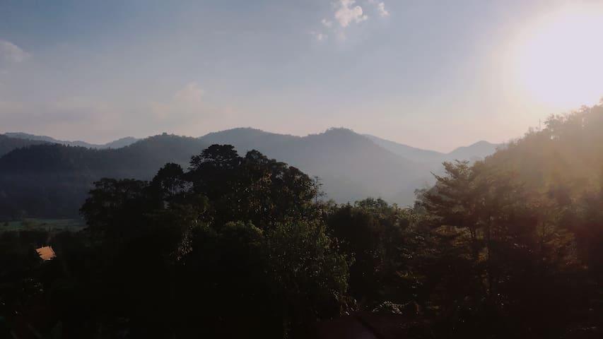 Forest RestHouse, Samoeng ,Chiangmai, Thailand