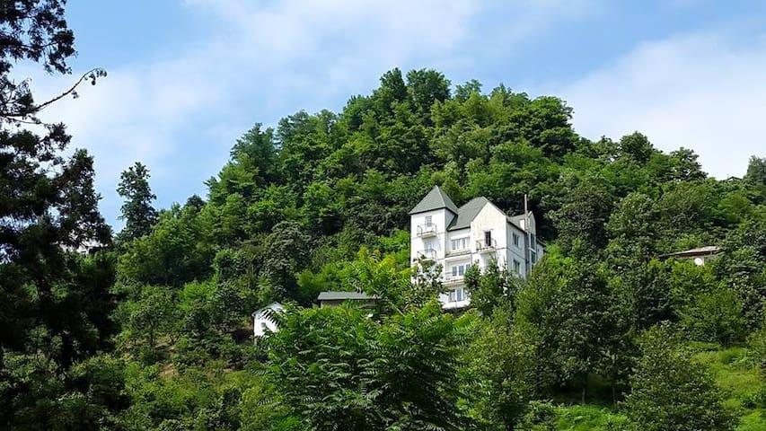 Белый дом в горах, утопающий в зелени - Batumi - Rumah
