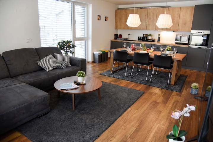 Villa Popp - Lux Apartment in Ljubljana (+parking)
