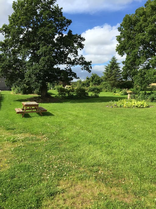 Garden seating areas and walks
