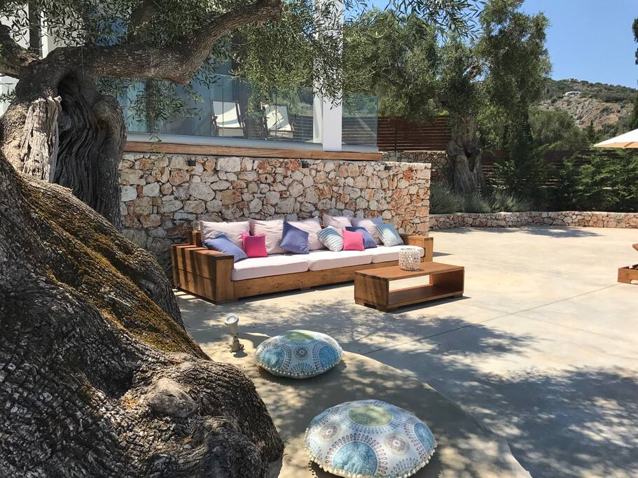 Outside siting area under the ancient olive tree