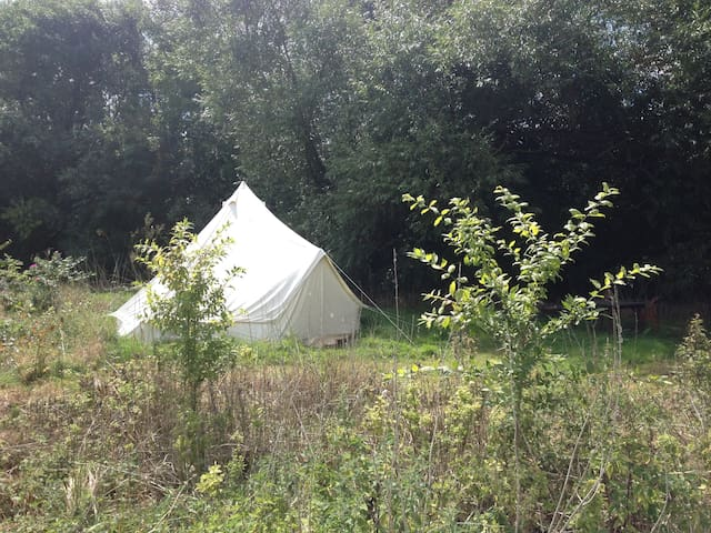 Bridge House Bell Tent, with real double bed. - Shillingford - Khemah