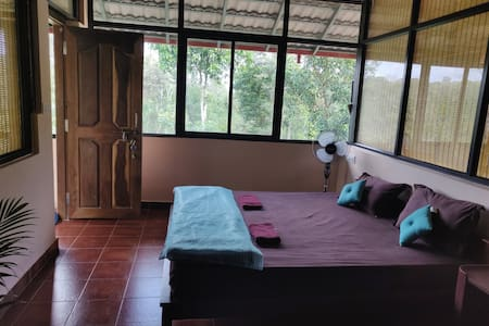 Elephant Trail Homestay, Coorg (5kms from Dubare)