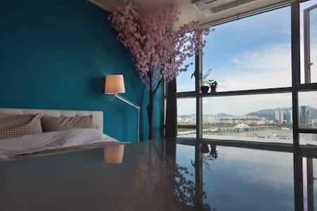 [Free Pocket Wi-Fi] 벚꽃나무/함께 보는 풀 윈도우 한강뷰 + 넓은 스튜디오