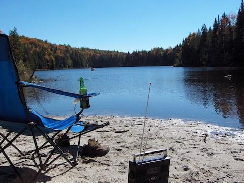 Bear Pause Cabin and Adirondack Shelter